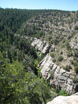 View of Walnut Canyon